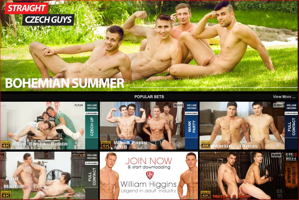 Men for Men Blog WilliamHigginsGayPornReview Gay porn site William Higgins wins 5 star review William Higgins